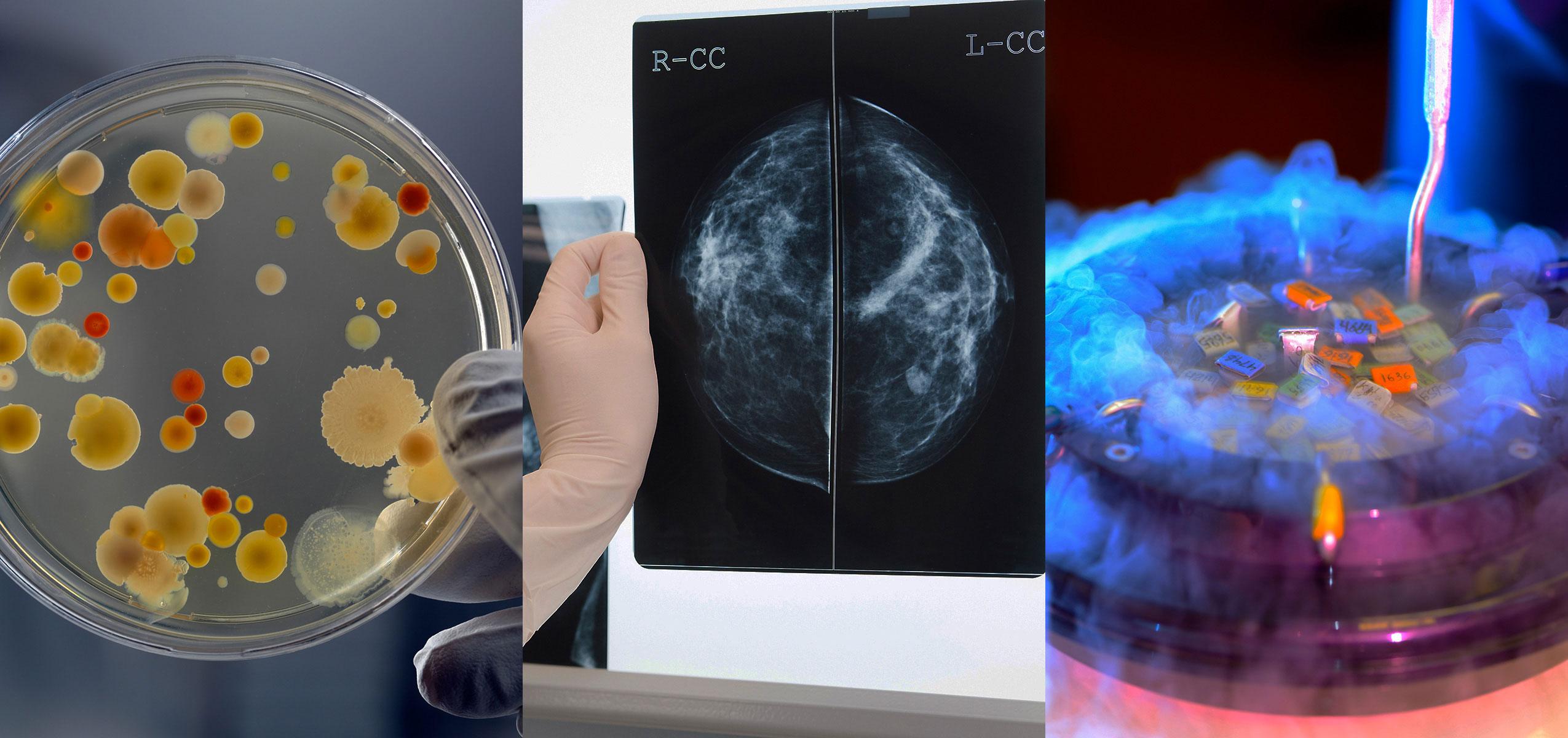 bioanalysis-homepage-1-new